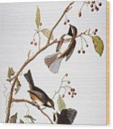 Audubon: Chickadee, (1827-1838) Wood Print