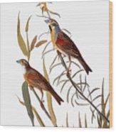 Audubon: Dickcissel Wood Print