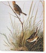 Audubon: Finch Wood Print