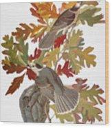 Audubon: Jay Wood Print