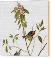 Audubon: Kinglet, 1827 Wood Print