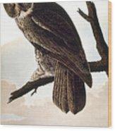 Audubon Owl Wood Print