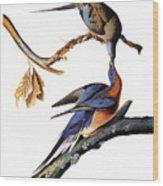 Audubon: Passenger Pigeon Wood Print