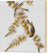 Audubon: Siskin Wood Print