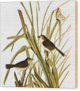Audubon: Sparrow, (1827) Wood Print