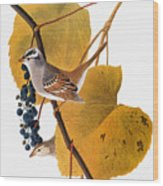 Audubon: Sparrow Wood Print