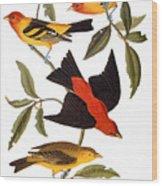 Audubon: Tanager, 1827 Wood Print