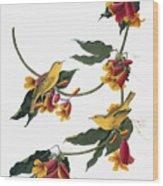 Audubon: Vireo, 1827-38 Wood Print