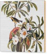Audubon: Warbler, 1827-38 Wood Print