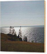 August Evening At Yellowstone Lake Wood Print