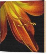 August Flame Glory Watercolor Wood Print