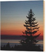August Glow Pine Wood Print