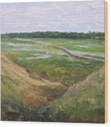 August Marsh Boardwalk Wood Print