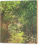 August Shade Wood Print