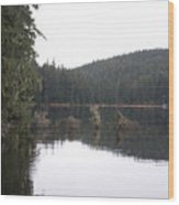 Auke Lake Wood Print