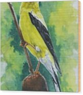 Aureate Wood Print