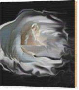 Aurora Rosealis Wood Print