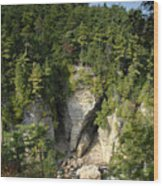 Ausable Chasm Wood Print