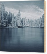 Ausable River 9420 Wood Print