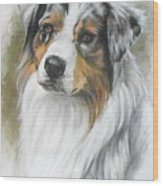 Aussie Shepherd Portrait Wood Print