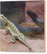 Australia - The Taipan Snake Wood Print