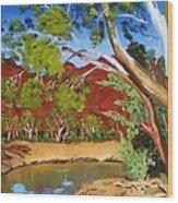 Australian Billabong Wood Print