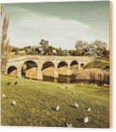 Australian Bridges Wood Print