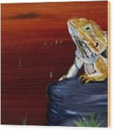 Australian Central Bearded Dragon Wood Print