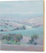 Australian Country Landscape Painting Wood Print