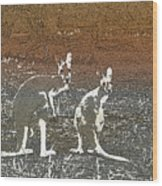 Australian Red Kangaroos Wood Print