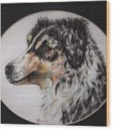 Australian Shepherd Della Mae Wood Print