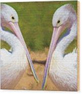 Australian White Pelicans Wood Print