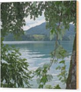 Austrian Lake Through The Trees Wood Print