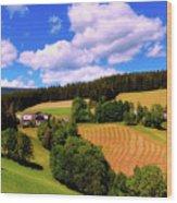 Austrian Rural Forest Vista Wood Print