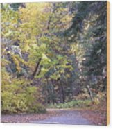 Autum Colors Wood Print