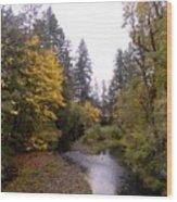 Autum In Oregon Wood Print