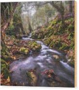 Autum In The Sierra Negra Highlands Wood Print