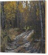 Autum Path Wood Print