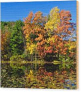 Autumn - Fall Color Wood Print