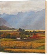 Autumn - Hex-river Valley Wood Print