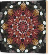 10446 Autumn 01 Kaleidoscope Wood Print