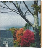 Autumn 1010 Wood Print