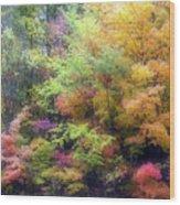 Autumn 2 - 16oct2016 Wood Print
