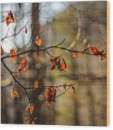 Autumn 2 Wood Print