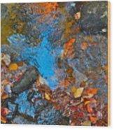 Autumn 2015 115 Wood Print