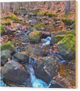 Autumn 2015 174 Wood Print