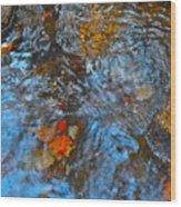 Autumn 2015 187 Wood Print