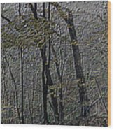 Autumn 2015 Panorama In The Woods Pa 01 Wood Print