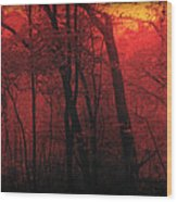Autumn 2015 Panorama In The Woods Pa 06 Wood Print