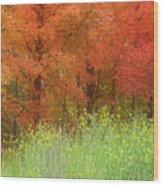 Autumn 3 - 16oct2016 Wood Print